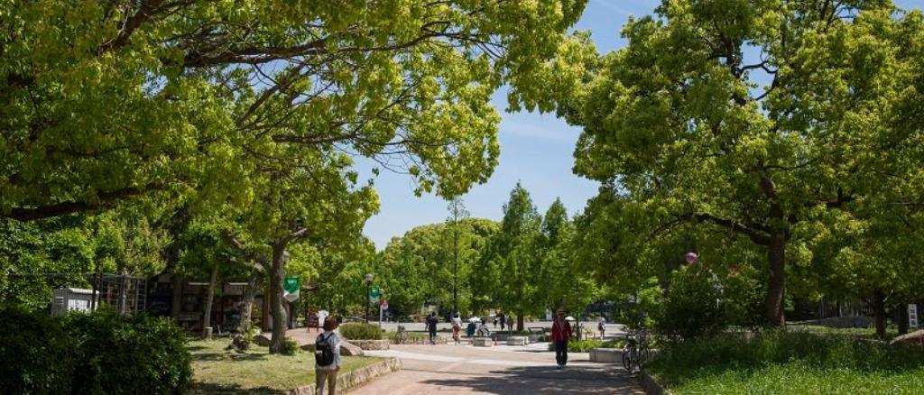 大阪市内の人気ランニングコース(長居公園 東住吉区)